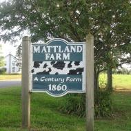 Mattland Farm