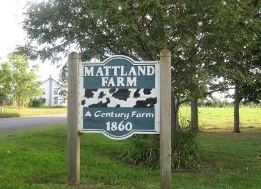 Mattiland sign